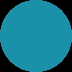 Oval Copy 2